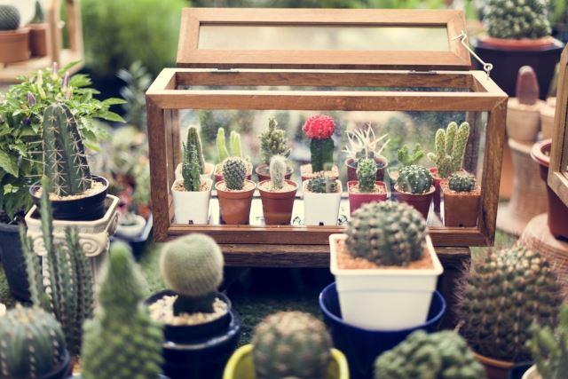 . 45 Amazing Indoor Garden Ideas   27 is So Easy