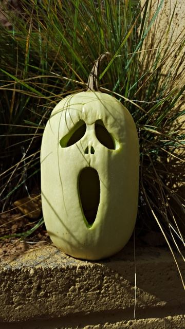 Eerie Fright!