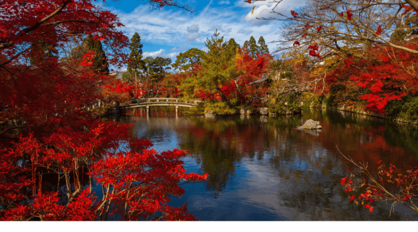 Featured Image -JAPANESE GARDEN LANDSCAPING