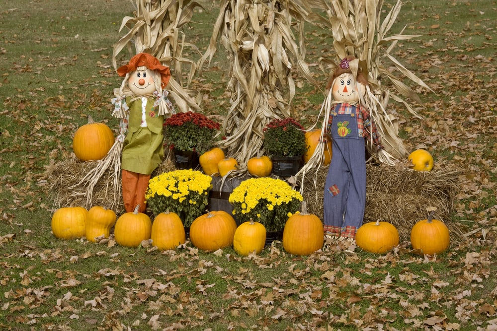 Happy Scarecrows