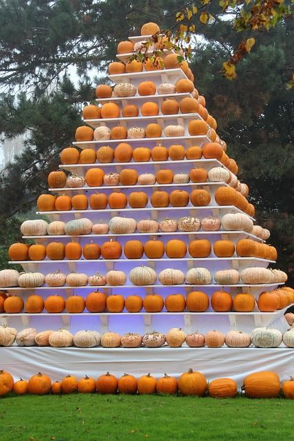 Pyramid of Fall