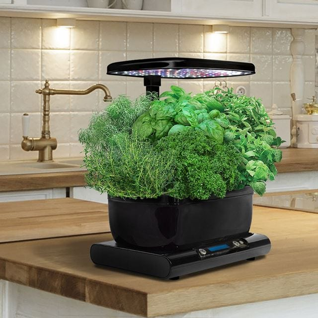 AeroGarden Harvest with Gourmet Herb Seed Pod Kit