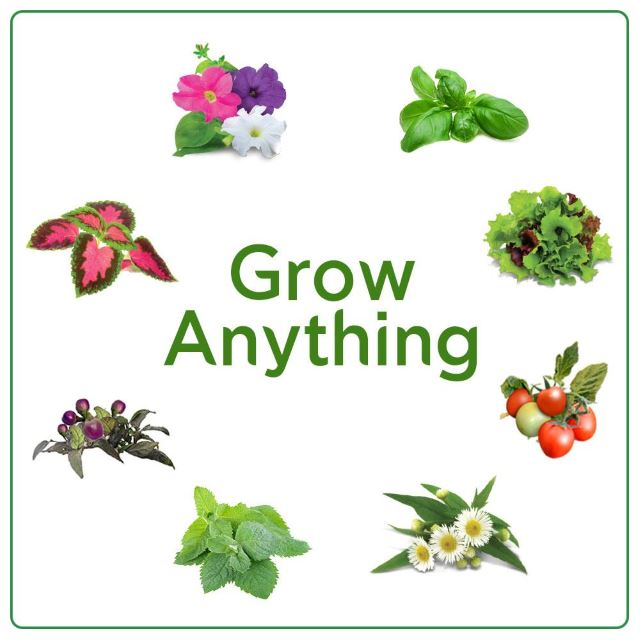 Grow Anything