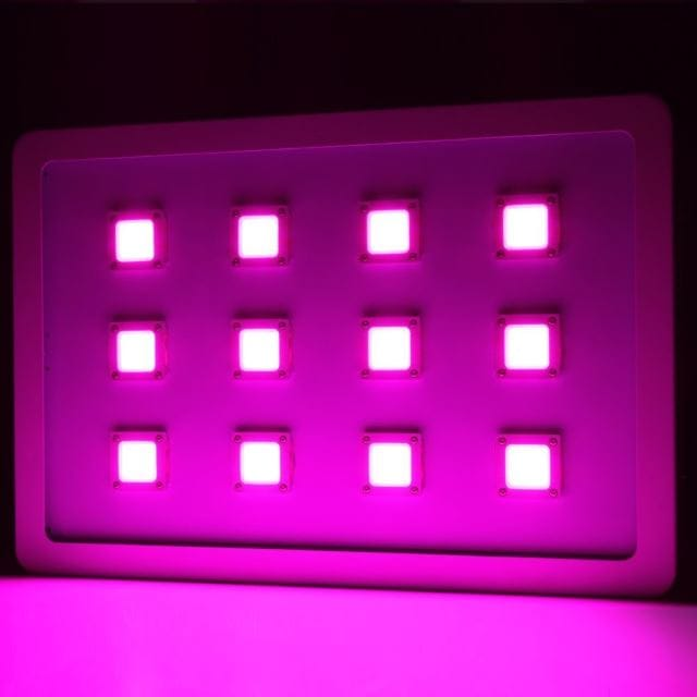 Morsen MAX4 3600W COB Led Grow Light Full Spectrum for Indoor Plant Greenhouse Grow Lamp Kit