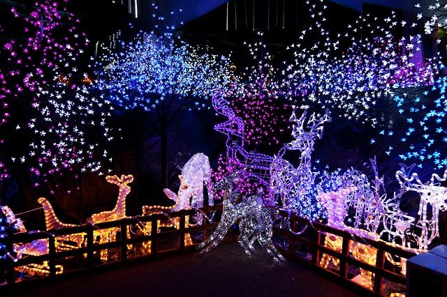vivid christmas lights - Best Outdoor Christmas Decorations