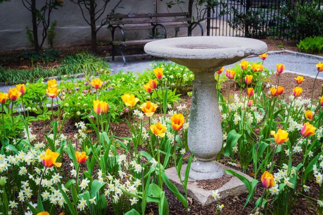 Simple Stone Bird Bath