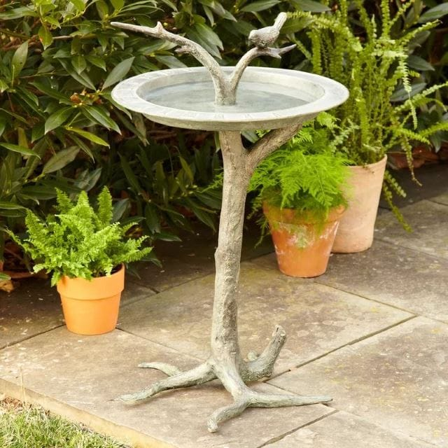 Branch Bird bath