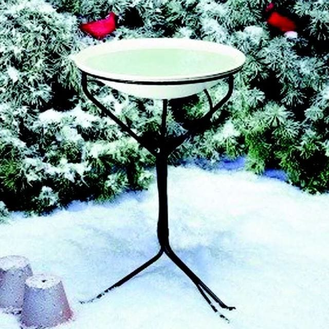 Elegant Winter Bird Bath