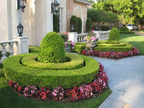 Pink Hedges