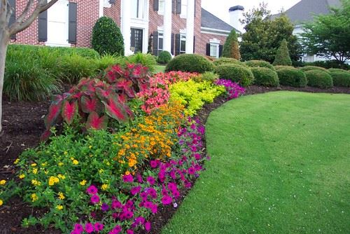 Colored Hedging