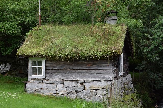 This Garden Hut Shed Is Practically Growing Into The Scenery. The Hut Is  Sheer Nature, As Depicted By The Garden Growing Off The Roof Of The  Structure.