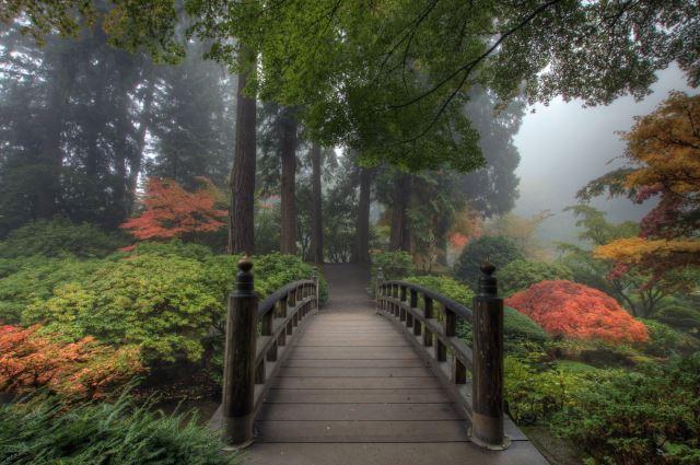 Peaceful Paths