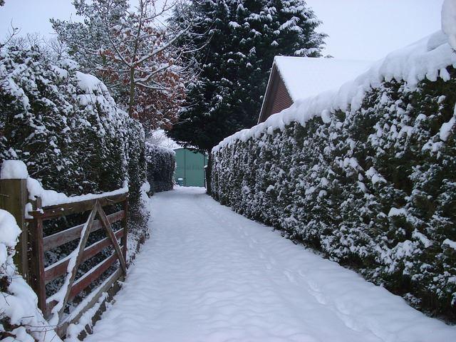 snowy-258353_640