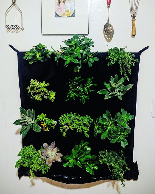 Vertical Garden Design Ideas Vertical Gardening Ideas. Pocket Planter