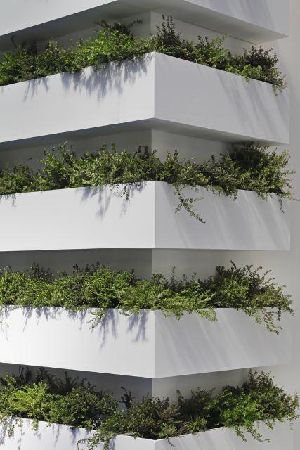 Corner Vertical Oasis