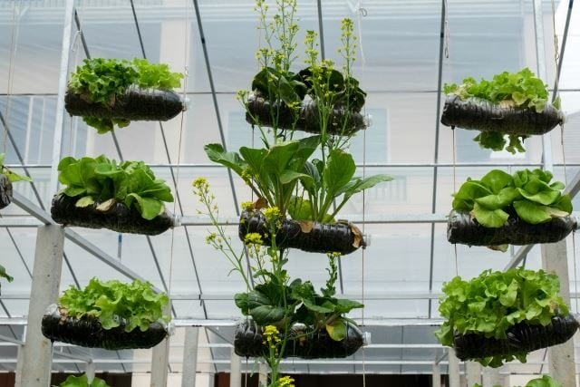 56 Of The Best Vertical Gardening Ideas: #27 Is Gorgeous