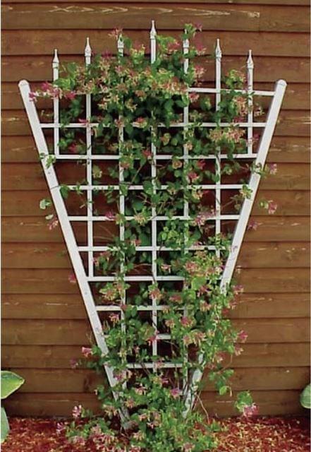39 Garden Trellis Ideas Fabulous Support For All Your