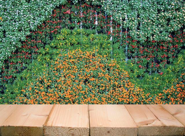 Swooping Garden Wall