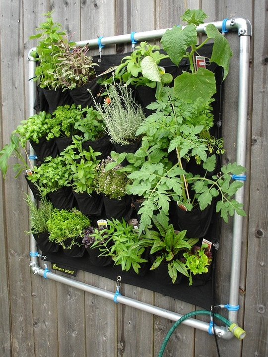 Small Vertical Wall Garden