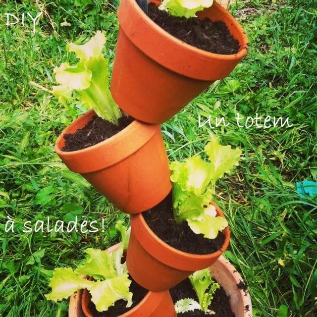 DIY Vertical Gardenscape