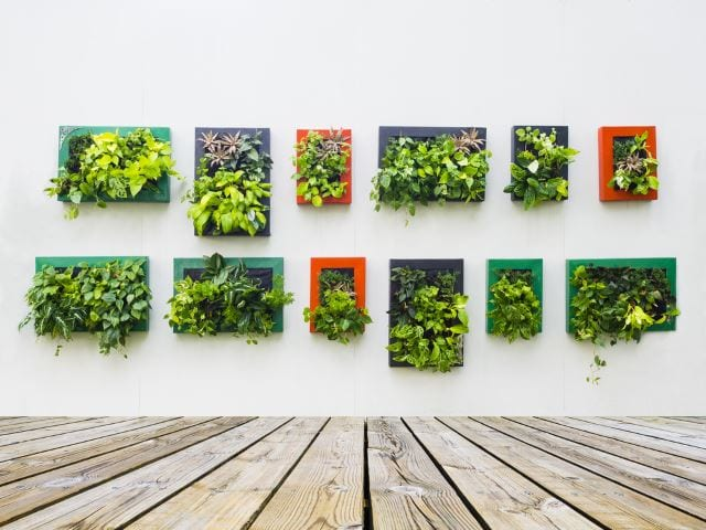 Wall Planter Art