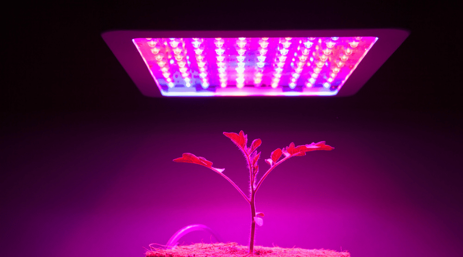 Featured Image - BEST T5 GROW LIGHTS REVIEWS