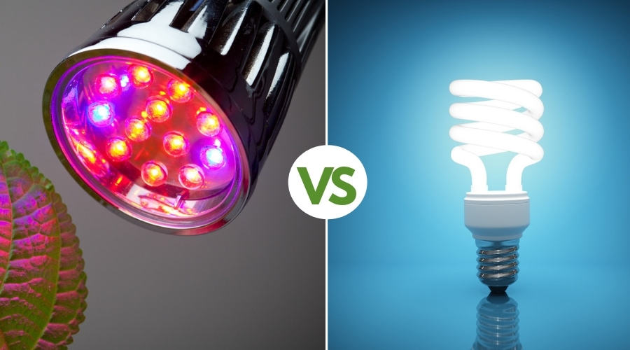 Grow Lights Vs Regular Lights The Best Lighting For Your Needs