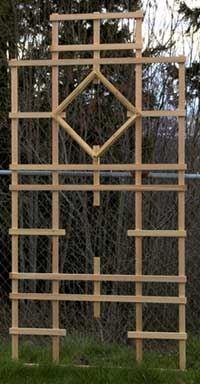 Trellis Structure