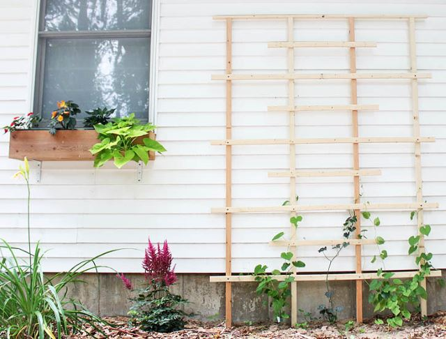 Simple Trellis Design