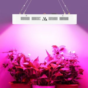 Dimgogo 1500w Double Chips LED Grow Light 1