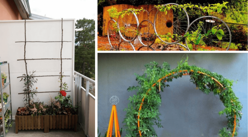 Featured Image - THE BEST DIY GARDEN TRELLIS IDEAS