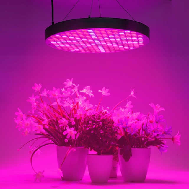 50W LED Plant Grow Lights, Shengsite UFO 250 LEDs Indoor Plants