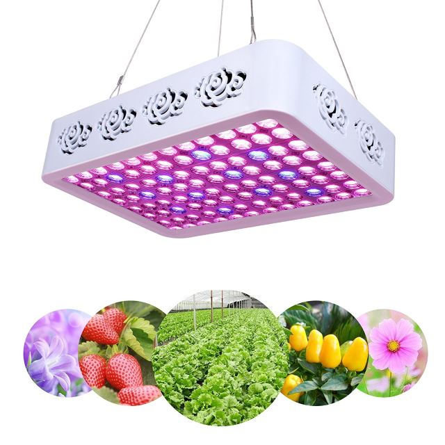 Plant-LED-Grow-Light-Full-Spectrum-300W