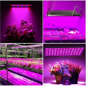 Roleadro LED Grow Light Bulb 1