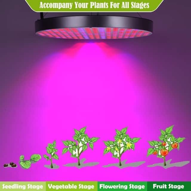 Shengsite UFO 50W LED Plant Grow Lights1