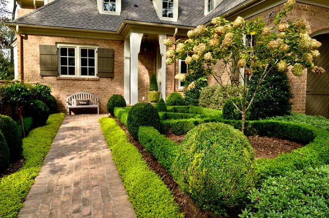 Side Garden Hedges