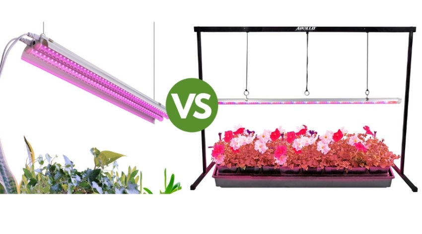 Featured Image - T5 VS T8 GROW LIGHTS_ WHAT YOU NEED TO KNOW