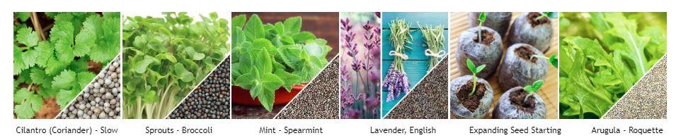 39 Best Online Gardening Stores