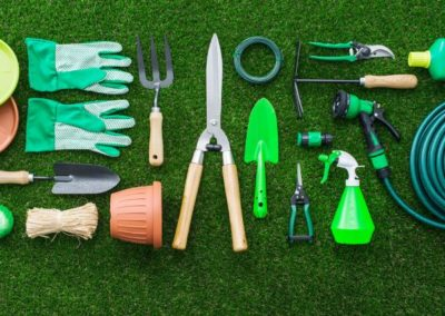 Set of gardening tools on the lush grass in the garden, flat lay
