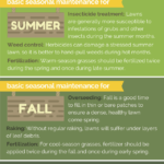 Should You Hire a Lawn Service?