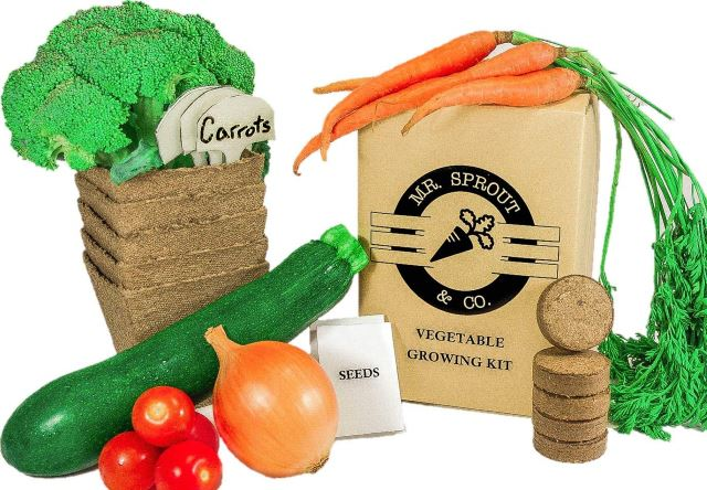 Organic Vegetable Kit
