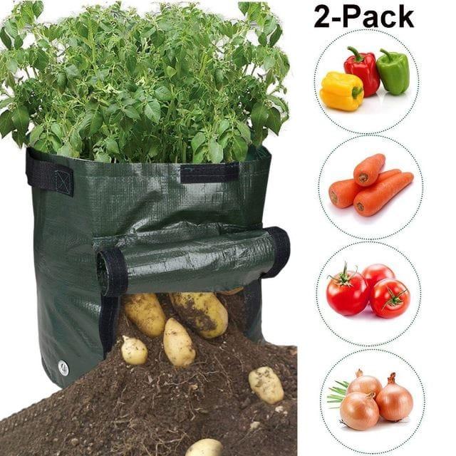 Easy Harvest
