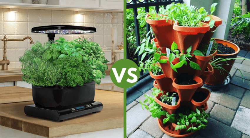 Featured Image - AEROGARDEN VS TOWER GARDEN_ PROS AND CONS OF EACH
