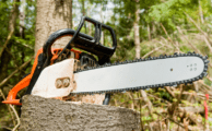 Best Cheap Chainsaws Review 2019