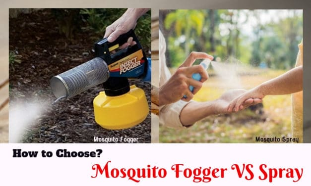 How to Choose? Mosquito Fogger VS Spray