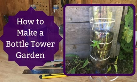 How to Make a Bottle Tower Garden