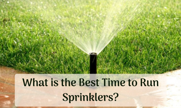 What is the Best Time to Run Sprinklers?