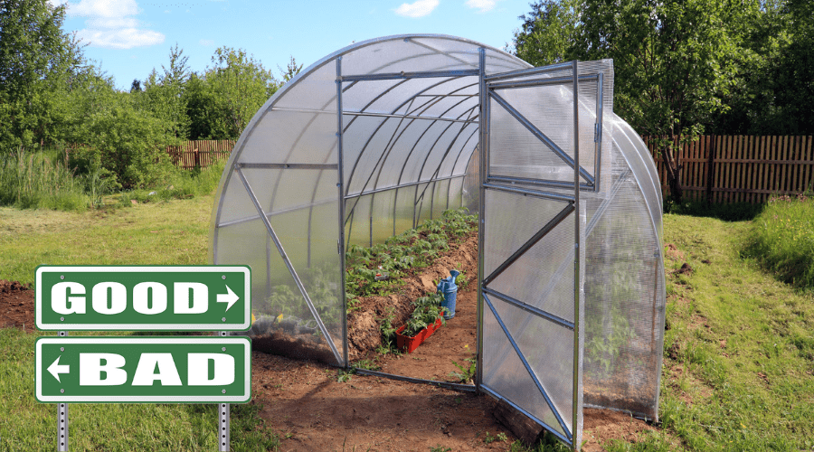 Featured Image - THE ULTIMATE QUESTION_ ARE GREENHOUSES BAD_