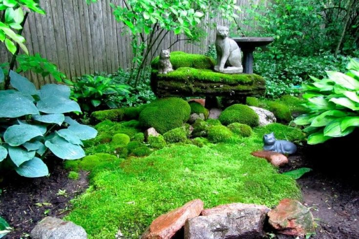 A small garden with rocks covered on moss and a perennial plants decorated with 3 cats statue.