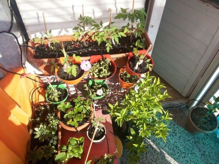Simple scalable Raspberry pi garden